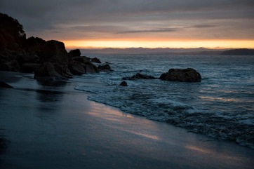 © Neil Hutton _ Moutohora 25