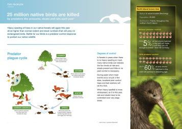 Battle for our Birds: Predator response 2017