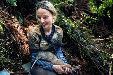 NRH - kiwi conservation 7