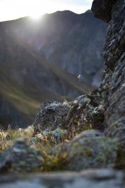 ©Neil Hutton _ SI 5 day roadtrip (32)
